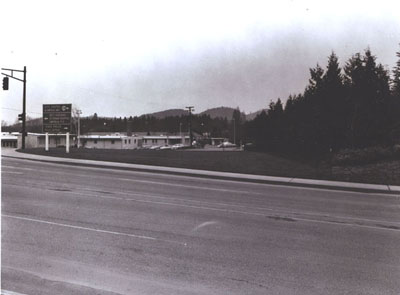 Oregon - Screen planting of Incense Cedar on fill on Interstate 5 in Roseburg.  Object - to reduce noise to hospital, left center of photograph.  Planted in 1955.  These trees are 15-18 feet high.