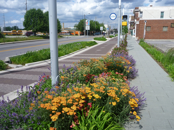 Colorful flowers and plants are in full bloom and separate the bike trail from the walking trail.